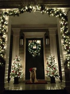 20 stunning Christmas trees, table decorations and more - LOVE THIS PIC (others, too) with the lighted swag at the front door (and the dog!!)