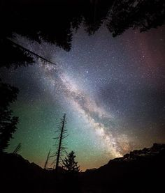 Nocturnal Photography by Jonathan Besler | Undermatic