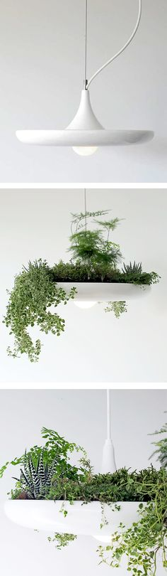 Now this is a way to get indoor plants enough light to grow! Use a grow bulb for even better faux sun. Pendant Lamp that can be used to grow herbs or succulents