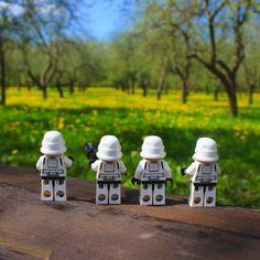 Возобновили поиски Лорда #lego #legostagram #legostarwars #legostormtrooper #stormtrooper #starwars #spring #легоштурмовик #минск #лошицкийпарк by cheshire_mouse
