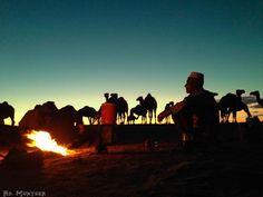 فى ضيافة راعي  #صحراء_ليبيا