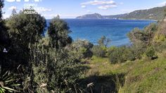 Sea front plot of land for sale in Pentati Corfu-CPA 3595 Corfu Island, Corfu Greece, Land For Sale, Sea, Mountains, Nature, Travel, Naturaleza, Trips