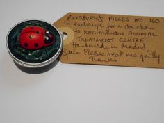 Pillsbury?s Pieces No, 160.  Pin - dark green capsule with wooden ladybird.  In exchange for a donation to KATHMANDU ANIMAL TREATMENT CENTRE, Nepal.  Available at St. George's Church, Madrid on Saturday 13 June from 11.00 - 15.00.