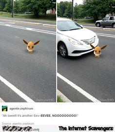 Pokemon Go funny Pictures – Pokemon Go in a nutshell | PMSLweb