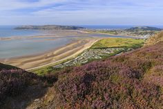 Lodges & Static Caravans for Sale in Conwy – Aberconwy Resort & Spa Caravans For Sale, Relaxation Room, Steam Room, North Wales, Luxury Holidays, Summer Breeze, Jacuzzi, Resort Spa, Lodges