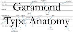 Typo.graphy: Garamond Type Anatomy