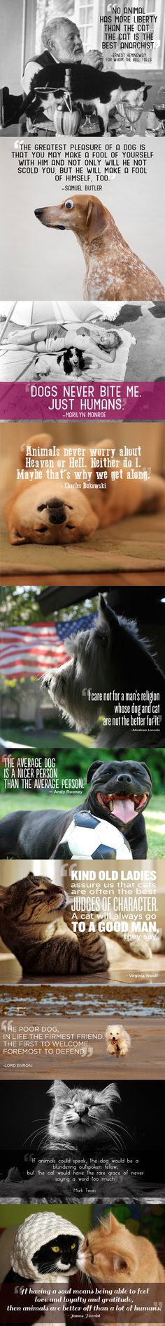 Quotes about pets that'll make you want to hug yours. <3