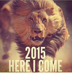 #NewYear 2015♡ Ten rok będzie cudowny♥