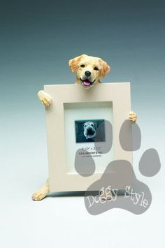 Yellow Labrador Dog Holding Picture Frame http://doggystylegifts.com/products/yellow-labrador-dog-holding-picture-frame