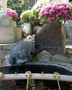 "– Mika no sekai - Japan (@mika_no_sekai) na Instagrame: ""This is purification fountain in front of Ushitora shrine. If you wonder how to behave during your…"""