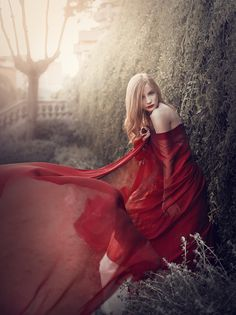 Lady in Red by Rebeca Saray Gude, via Behance