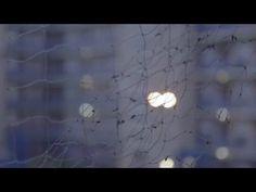 Bloum - La Part des Anges