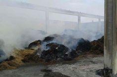 Collecchio, proseguono le operazioni di spegnimento dell'incendio: pompieri ancora in azione
