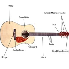 How to Play Guitar for Beginners: Free Online Lessons. hmmm... we have a guitar, so, why not?