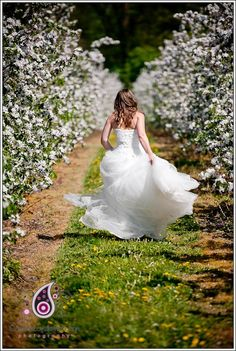 The link is broken....but I am excited to have wedding pictures with all the blossoms on the apple trees!