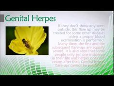 Genital Herpes - How to Cure Genital Herpes #HowtoCureGenitalHerpes