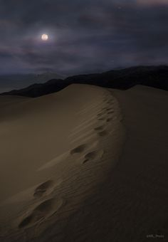 The beauty of a moment caught in time, peaceful. Mesquite Flat Dunes - Death Valley, CA