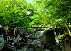 王子公園。水辺が恋しい、楽しい。