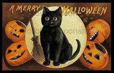 Vintage Black Cat Jack O Lantern Pumpkins Halloween Wall Art