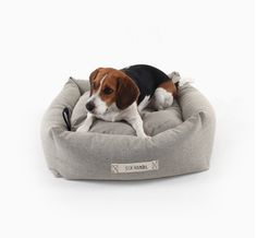 The Six Hands' Dog House Bed