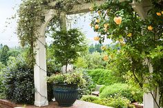 An arbor with a cascade of 'Autumn Sunset' roses and clematis frames the view of Vancouver Lake and the verdant West Hills of Portland, Oregon, that drew homeowner Candace Young to the property she has converted to a year-round retreat. Garden Design Plans, Home Garden Design, Home Garden Plants, Home Vegetable Garden, Very Small Garden Ideas, Beautiful Home Gardens, Asian Garden, Garden Arbor, Landscape Services