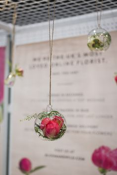 Our Peony pop up shop was full of hanging baubles full of posies, with peonies and foliage. Flower Bar, Flower Frame, Bloom And Wild, Floral Banners, Chocolate Shop, Send Flowers, Pop Up Shops, Flower Delivery, Peony