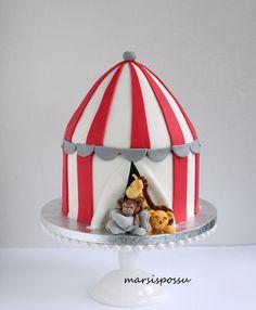Marsisposus: Sirkuskakku, Circus cake