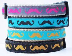 Mustache Pet Collor