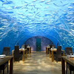 "Ithaa Undersea Restaurant, Rangali Island, Maldives,  beneath the Indian Ocean. Ithaa, meaning ""pearl,"" sits between three and six feet below sea level.  wow, talk about a table with a view."