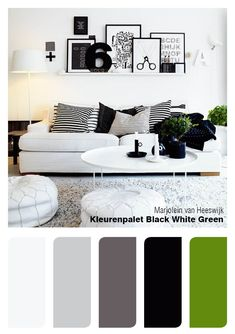 "Color palette ""Black White Green"" Maybe gray walls with green touches in tile, towels etc."