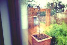 Rainy Sweden