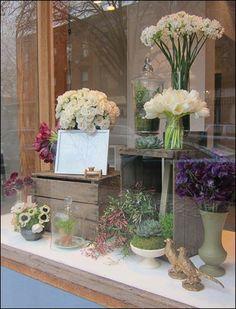 botanical brouhaha: Working Designer Wednesday: window display