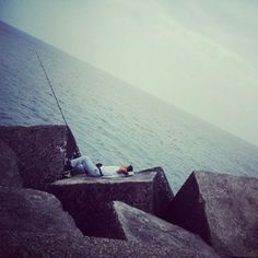 fishing @ scheveningen