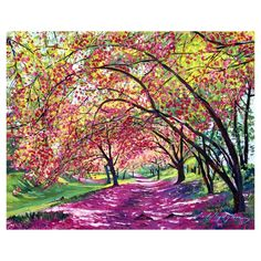 Cherry Tree Pathway Canvas Art