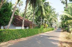Konaseema, Andhrapradesh