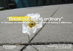 Tamayoz self development marketing campaign