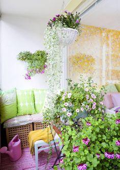Tee parvekkeestasi iloinen kesäkeidas värikkäillä tekstiileillä, kalusteilla, kukilla ja koriste-esineillä. Katso Unelmien Talo&Kodin värikkäät parvekeideat! Home Decor Inspiration, Outdoor Gardens, Outdoor Structures, Living Room, Plants, Home Living Room, Drawing Room, Plant, Lounge