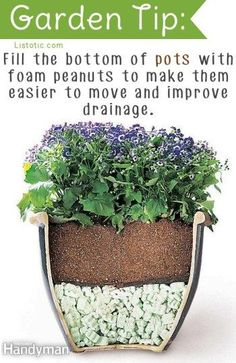 25 Brilliant Gardening Tips and Tricks - Page 23 of 26 -