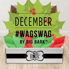 December WagSwag is here! NEW! from Big Bark now everyone can cdt awesome stuff for large dogs every month. Order NOW for December! Visit www.bigbarkonline.com