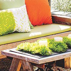 Table dressing - Surprising Planter Boxes - Sunset
