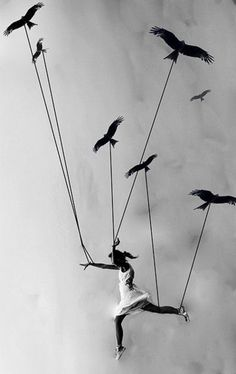 Fly away... My dreams carry me!