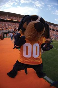 It's almost football time in TENNESSEE!