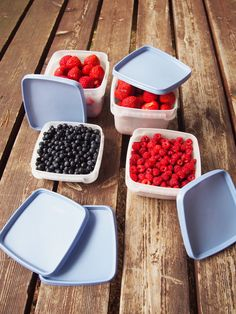Orthex freezer boxes preserve your summer berries for winter