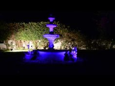 New 16 color Garden Accent Outdoor Landscape Light adds a Rainbow of Colors to your Yard! | lasersandlights.com blog