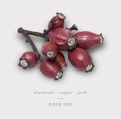 Rose Hip hemmerle