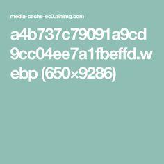 a4b737c79091a9cd9cc04ee7a1fbeffd.webp (650×9286)