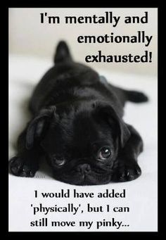 I'm mentally and emotionally exhausted! I would have added 'physically', but I can still move my pinky.