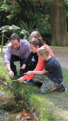 Hunt for bugs at Glendurgan - one of our '50 things to do before you're 11¾'