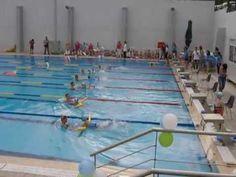 """""""Τα σκαθάρια"""" μικροί κολυμβητές 1"""