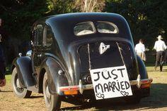Karaka Point Vineyard - Weddings (temporarily closed - find out. Vineyard Wedding, Just Married, Wines, Antique Cars, Weddings, Antiques, Vintage Cars, Antiquities, Newlyweds